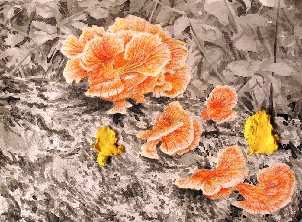 Orange Mushrooms, 24 x 18, 2013, Watercolor and Pigment Dust and Acrylic on Paper