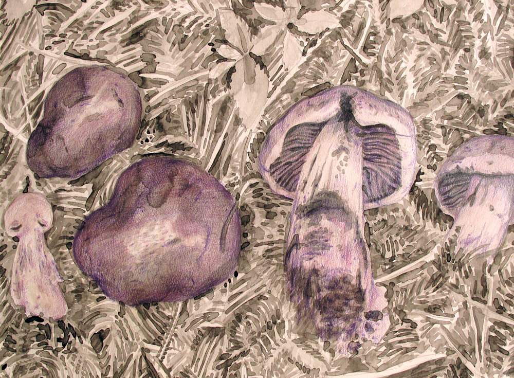 Purple Mushrooms, 24 x 18, 2013, Watercolor and Pigment Dust and Acrylic on Paper